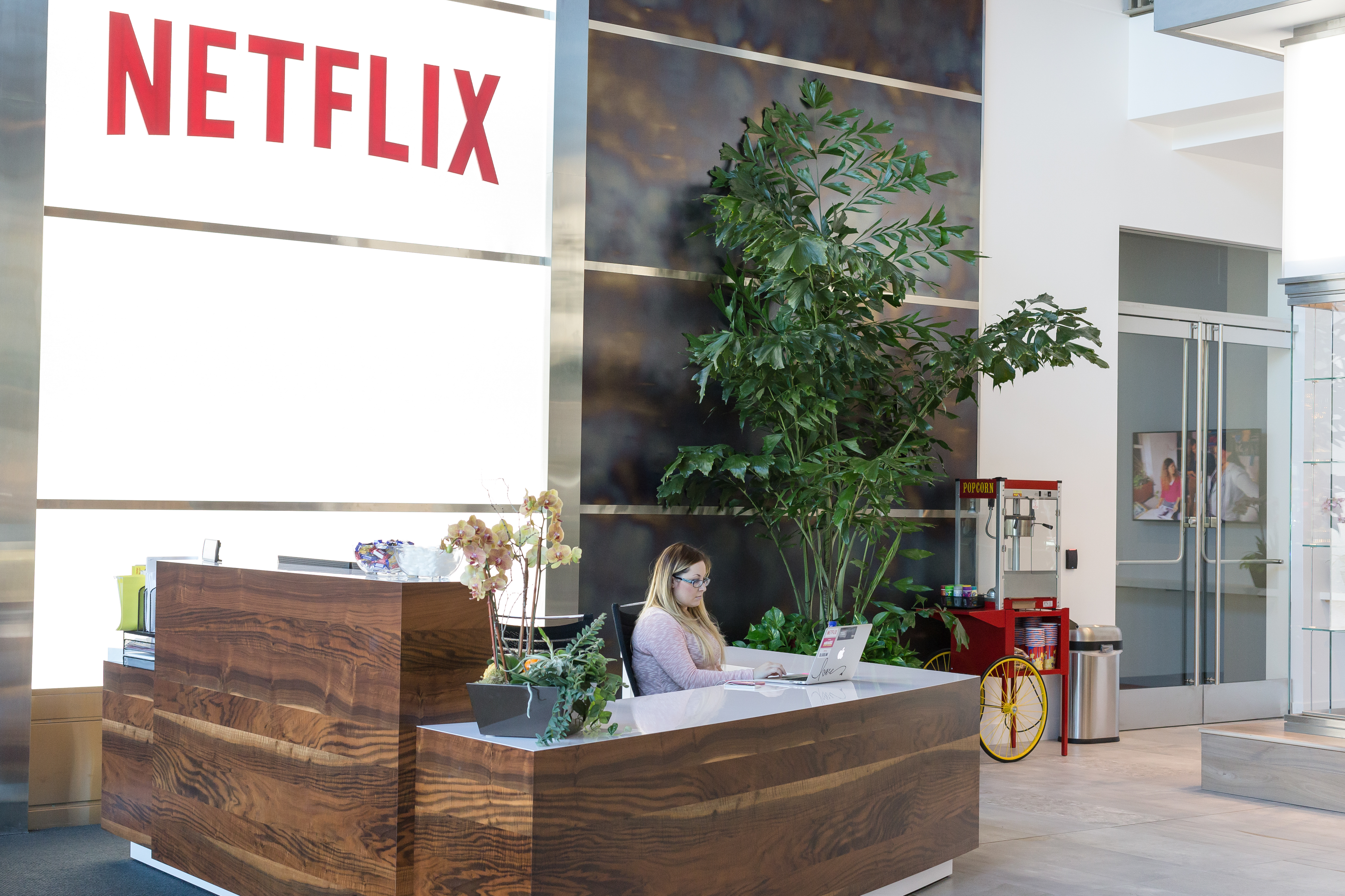 Netflix adds record 6.74 million subscribers but stock tanks on weak forecast