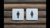 The imaginary predator in America's transgender bathroom war