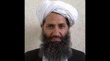 Afghan Taliban names new leader
