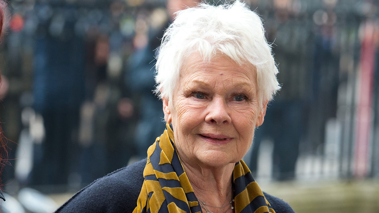 Judi Dench Nude Photos 85